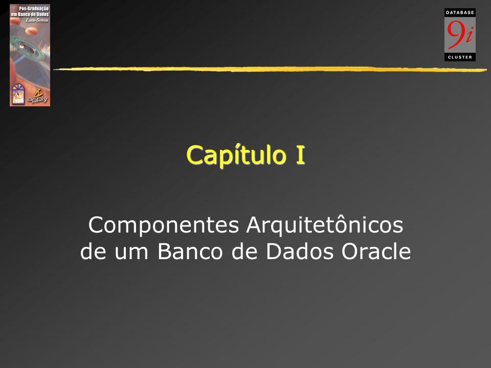 Capítulo I Componentes Arquitetônicos de um Banco de Dados Oracle