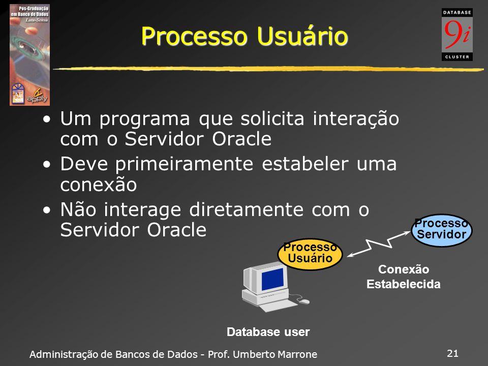Administração de Bancos de Dados - Prof. Umberto Marrone 21 Processo Usuário Um programa que solicita interação com o Servidor Oracle Deve primeiramen