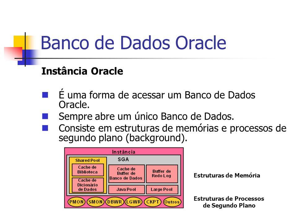 Banco de Dados Oracle Instância Oracle É uma forma de acessar um Banco de Dados Oracle. Sempre abre um único Banco de Dados. Consiste em estruturas de