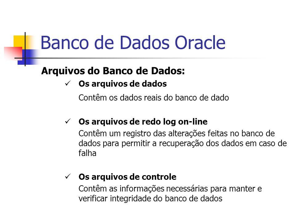 Banco de Dados Oracle Arquivos do Banco de Dados: Os arquivos de dados Contêm os dados reais do banco de dado Os arquivos de redo log on-line Contêm u