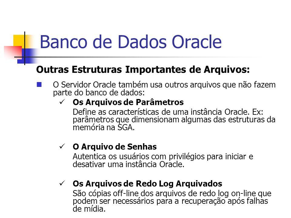 Banco de Dados Oracle Outras Estruturas Importantes de Arquivos: O Servidor Oracle também usa outros arquivos que não fazem parte do banco de dados: O