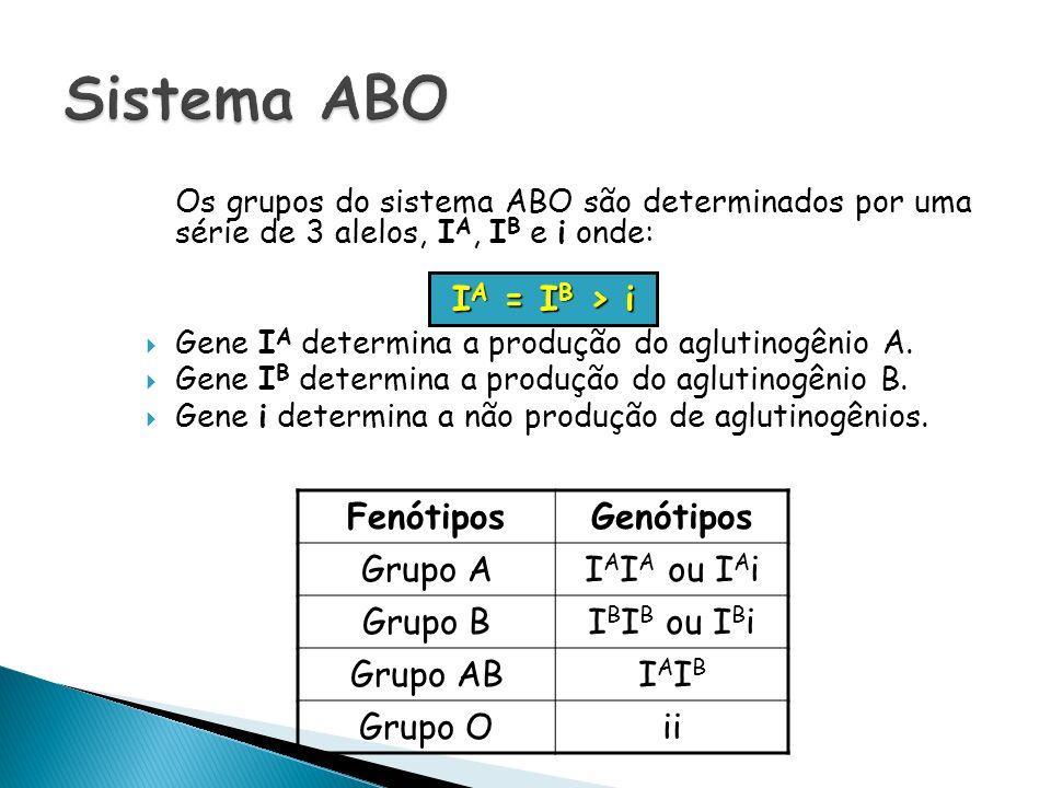 Os grupos do sistema ABO são determinados por uma série de 3 alelos, I A, I B e i onde: Gene I A determina a produção do aglutinogênio A. Gene I B det