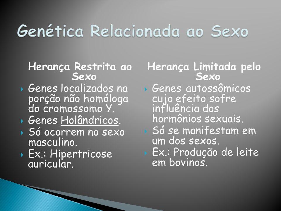 Herança Restrita ao Sexo Genes localizados na porção não homóloga do cromossomo Y.