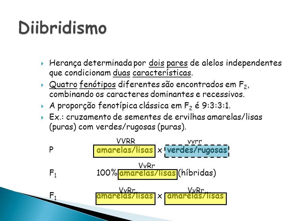 Herança determinada por dois pares de alelos independentes que condicionam duas características. Quatro fenótipos diferentes são encontrados em F 2, c