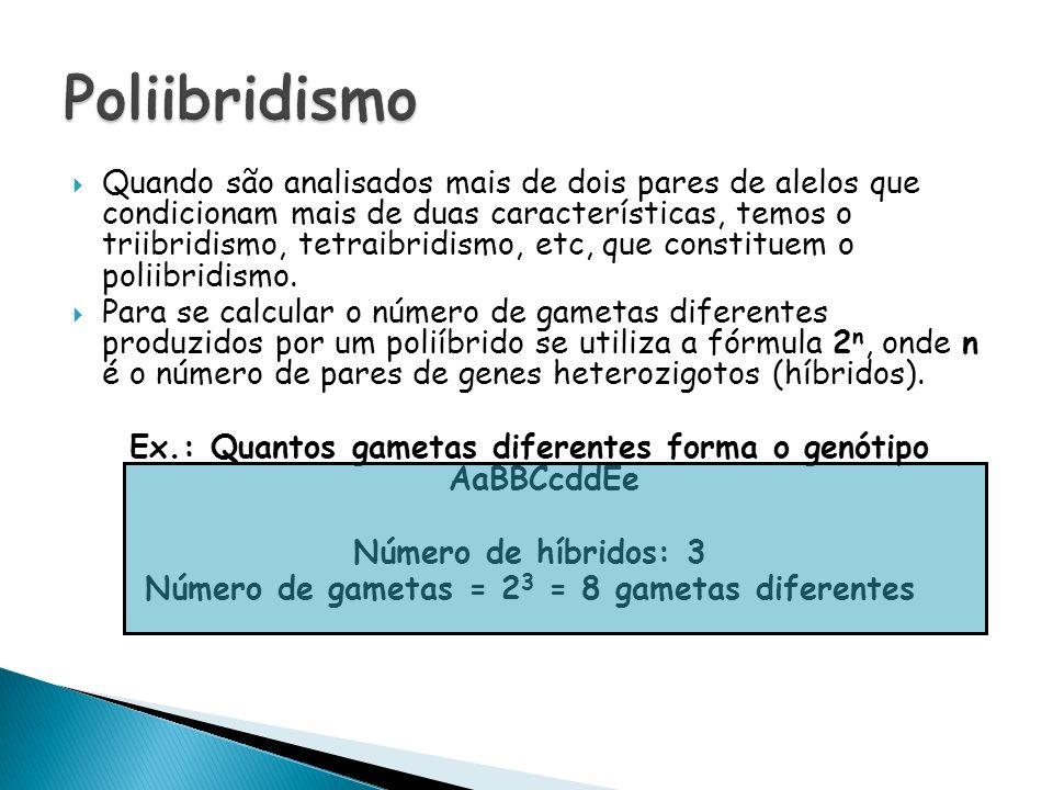 Quando são analisados mais de dois pares de alelos que condicionam mais de duas características, temos o triibridismo, tetraibridismo, etc, que consti