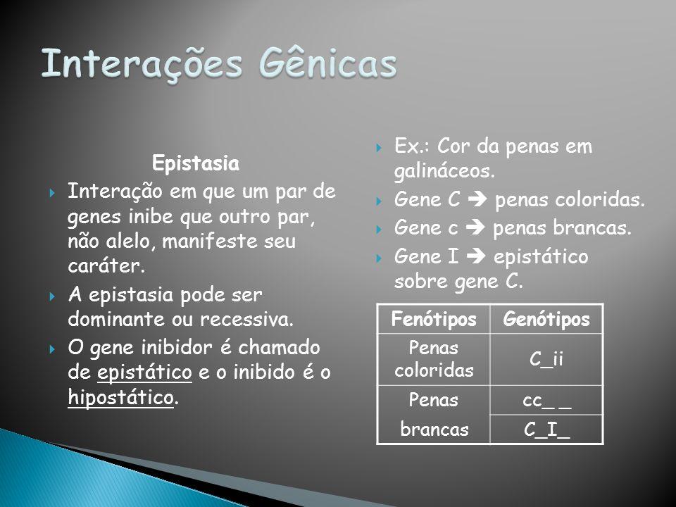 Epistasia Interação em que um par de genes inibe que outro par, não alelo, manifeste seu caráter.