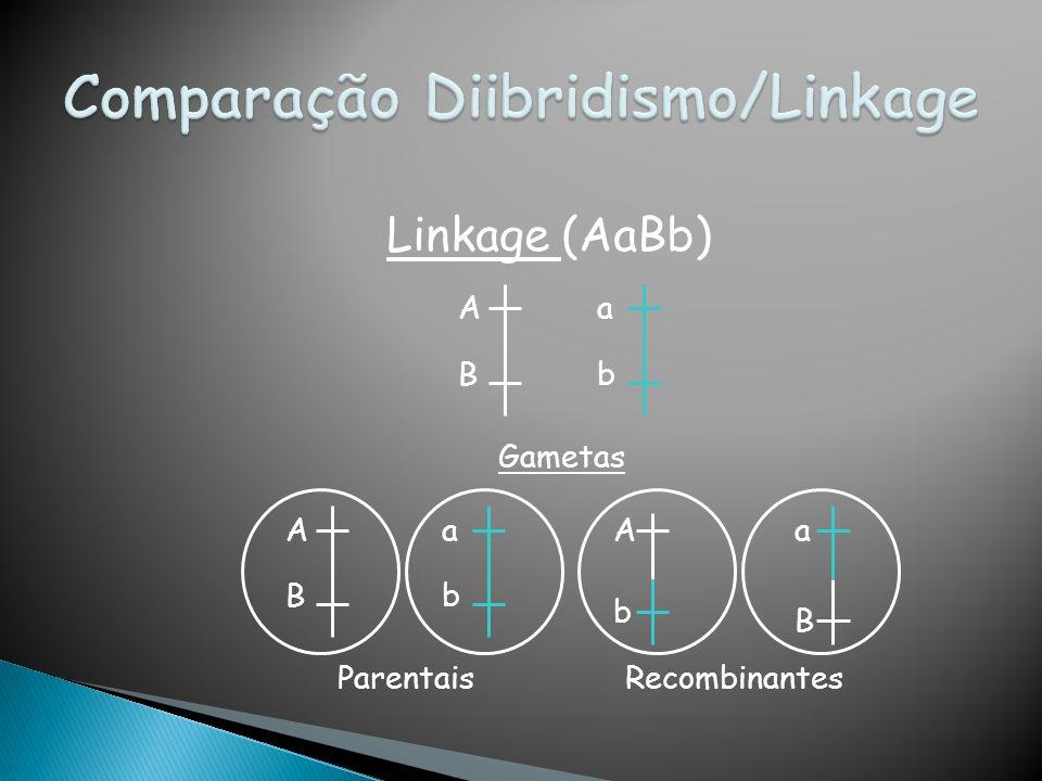 Linkage (AaBb) A B a b Gametas A B a b A b a B ParentaisRecombinantes