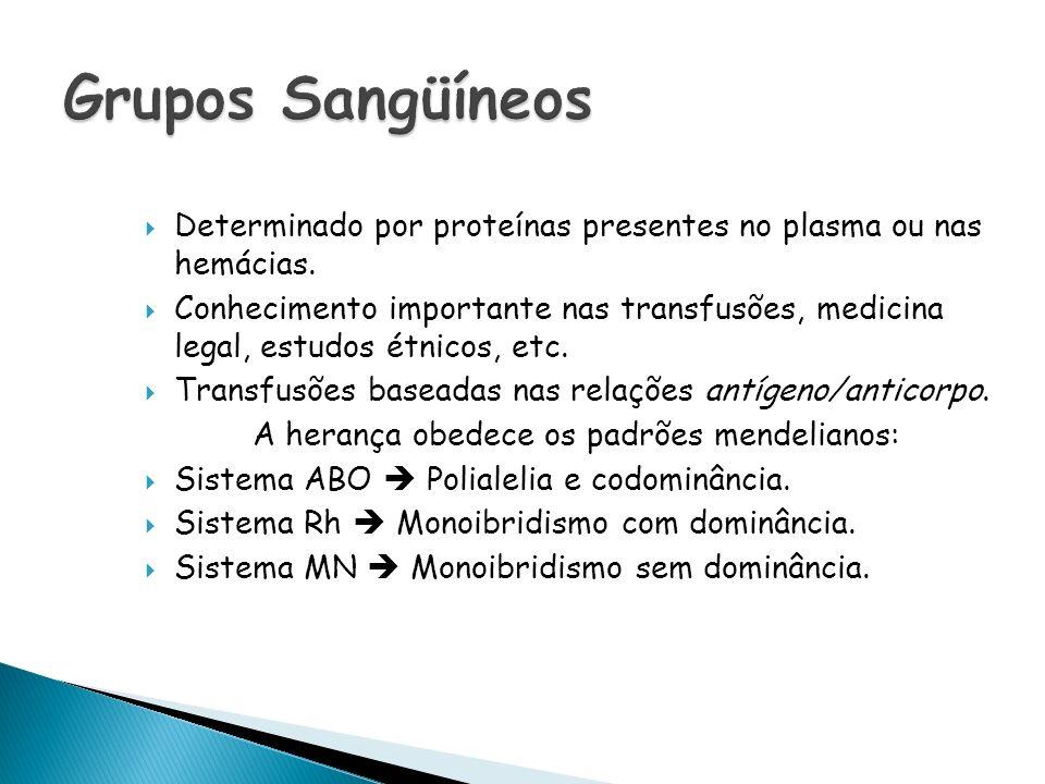 Grupo SangüíneoAglutinogênio nas hemácias Aglutinina no plasma AAAnti-B BBAnti-A ABA e B- O-Anti-A e Anti-B Doações O AB