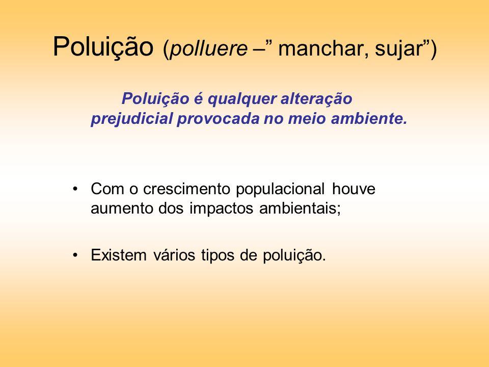 Poluição (polluere – manchar, sujar) Poluição é qualquer alteração prejudicial provocada no meio ambiente.