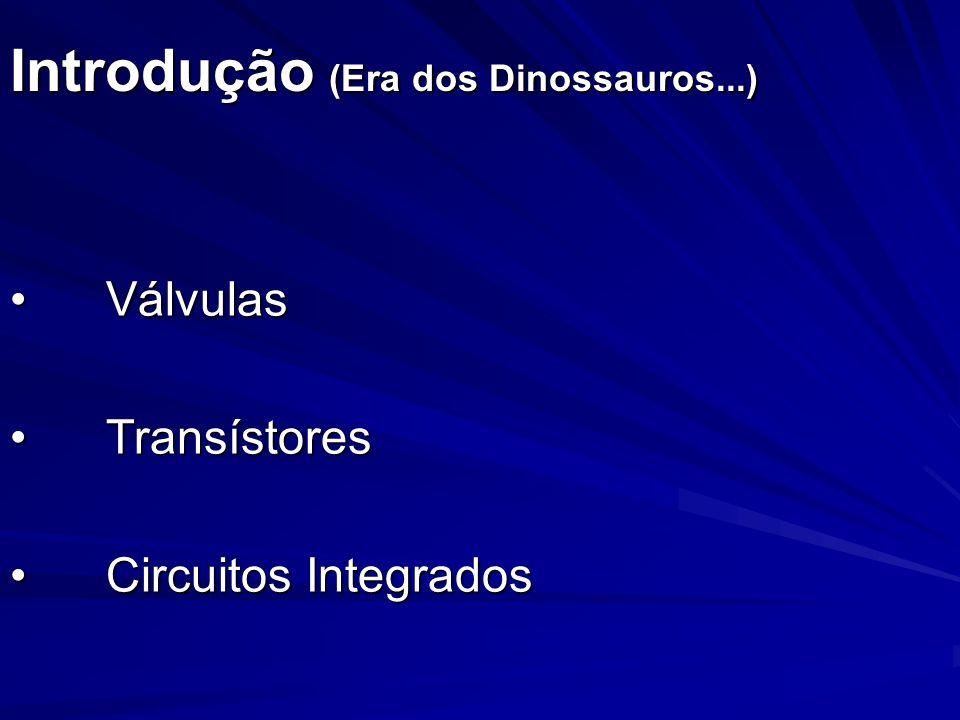Introdução (Era dos Dinossauros...) VálvulasVálvulas TransístoresTransístores Circuitos IntegradosCircuitos Integrados