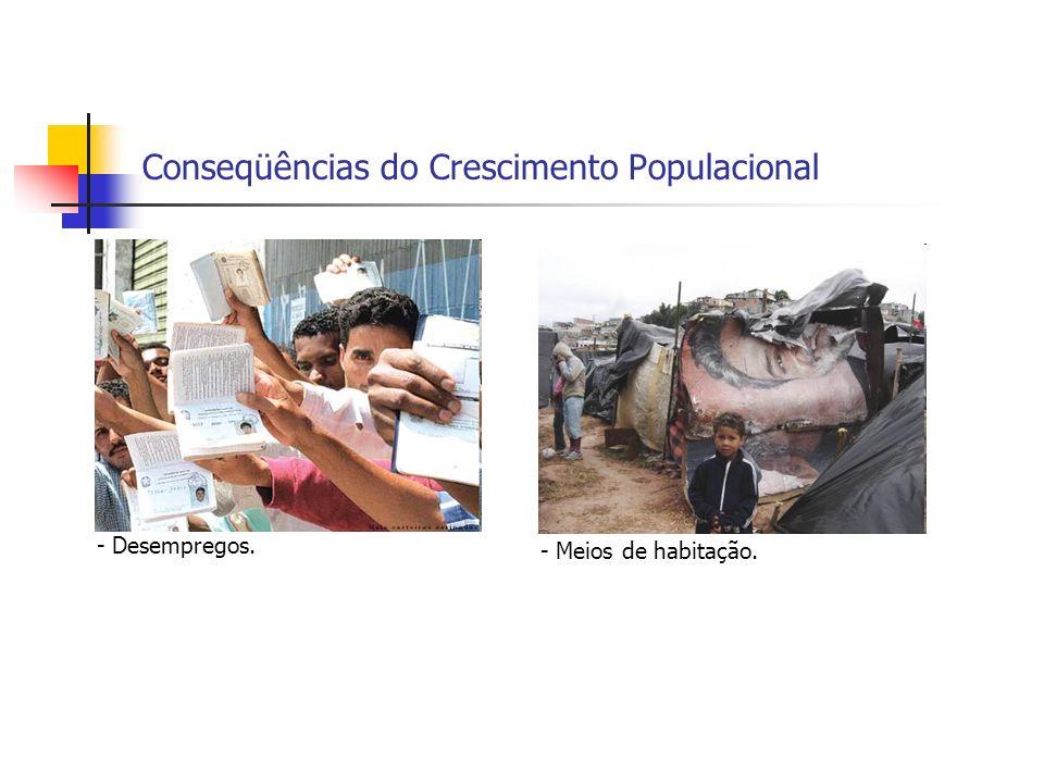 Conseqüências do Crescimento Populacional - Desempregos. - Meios de habitação.