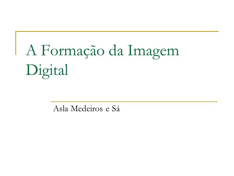 A Formação da Imagem Digital Asla Medeiros e Sá
