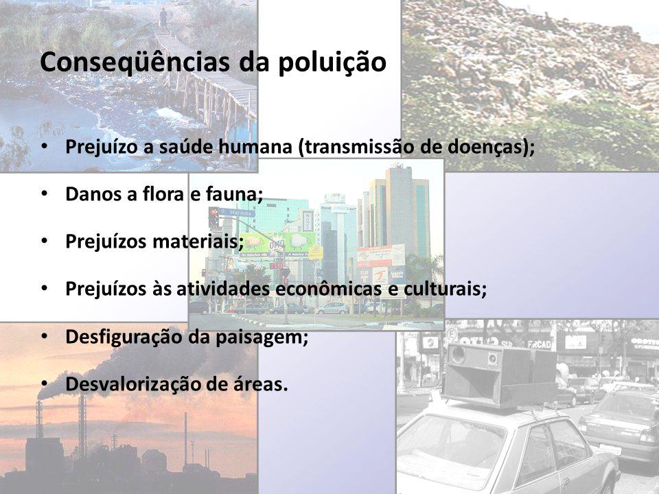 Conseqüências da poluição Prejuízo a saúde humana (transmissão de doenças); Danos a flora e fauna; Prejuízos materiais; Prejuízos às atividades econôm