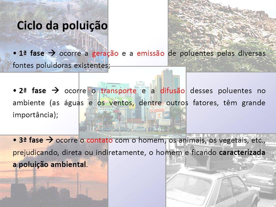 Ciclo da poluição 1ª fase ocorre a geração e a emissão de poluentes pelas diversas fontes poluidoras existentes; 2ª fase ocorre o transporte e a difus
