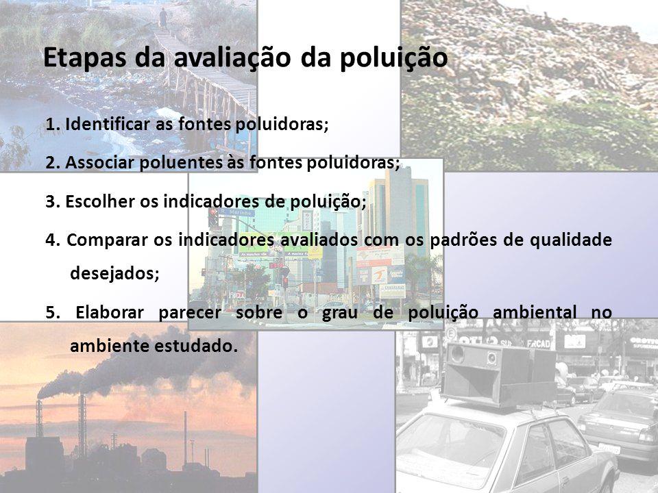 Etapas da avaliação da poluição 1. Identificar as fontes poluidoras; 2. Associar poluentes às fontes poluidoras; 3. Escolher os indicadores de poluiçã