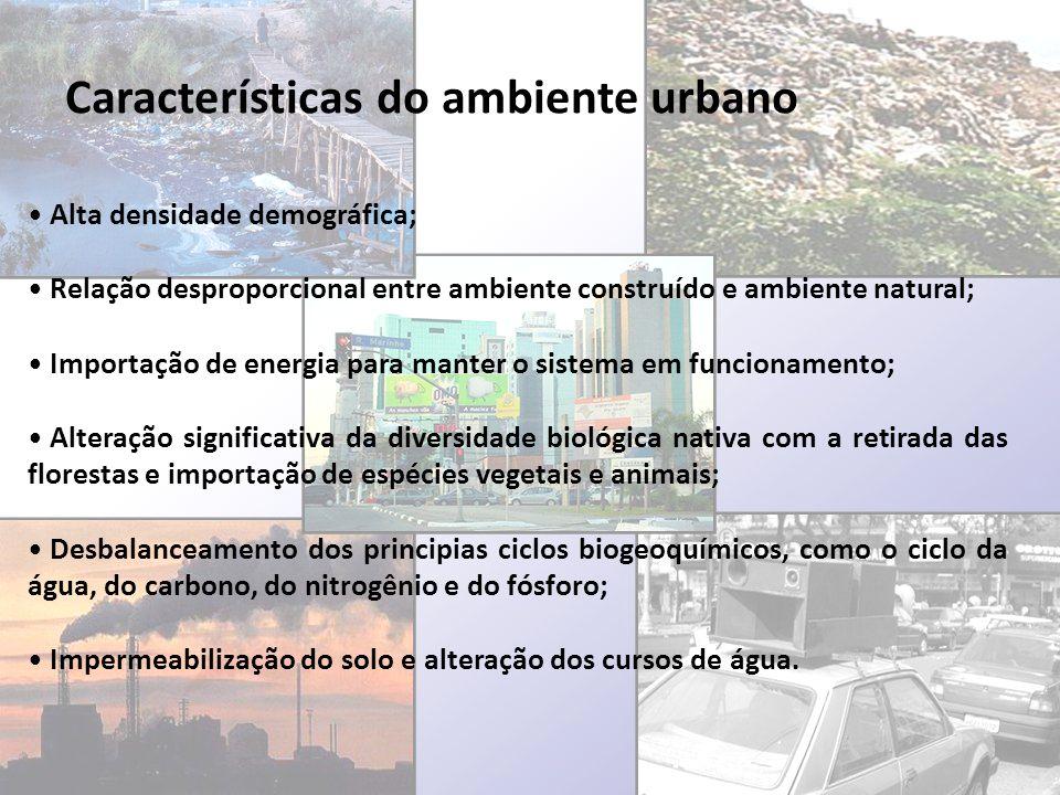 Características do ambiente urbano Alta densidade demográfica; Relação desproporcional entre ambiente construído e ambiente natural; Importação de ene