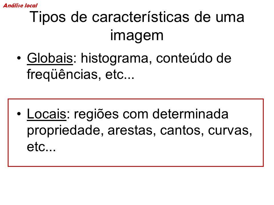 Tipos de características de uma imagem Globais: histograma, conteúdo de freqüências, etc... Locais: regiões com determinada propriedade, arestas, cant