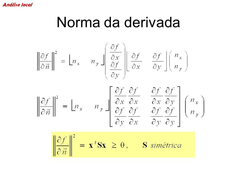 Norma da derivada Análise local