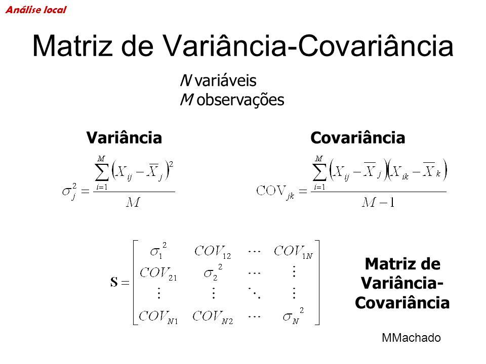 Matriz de Variância-Covariância N variáveis M observações VariânciaCovariância MMachado Análise local