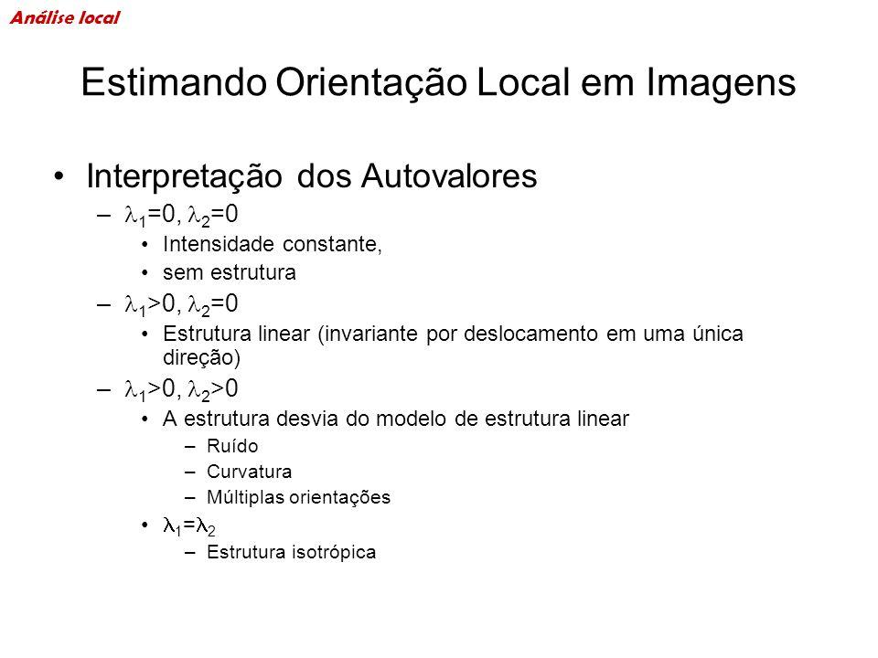 Estimando Orientação Local em Imagens Interpretação dos Autovalores – 1 =0, 2 =0 Intensidade constante, sem estrutura – 1 >0, 2 =0 Estrutura linear (i