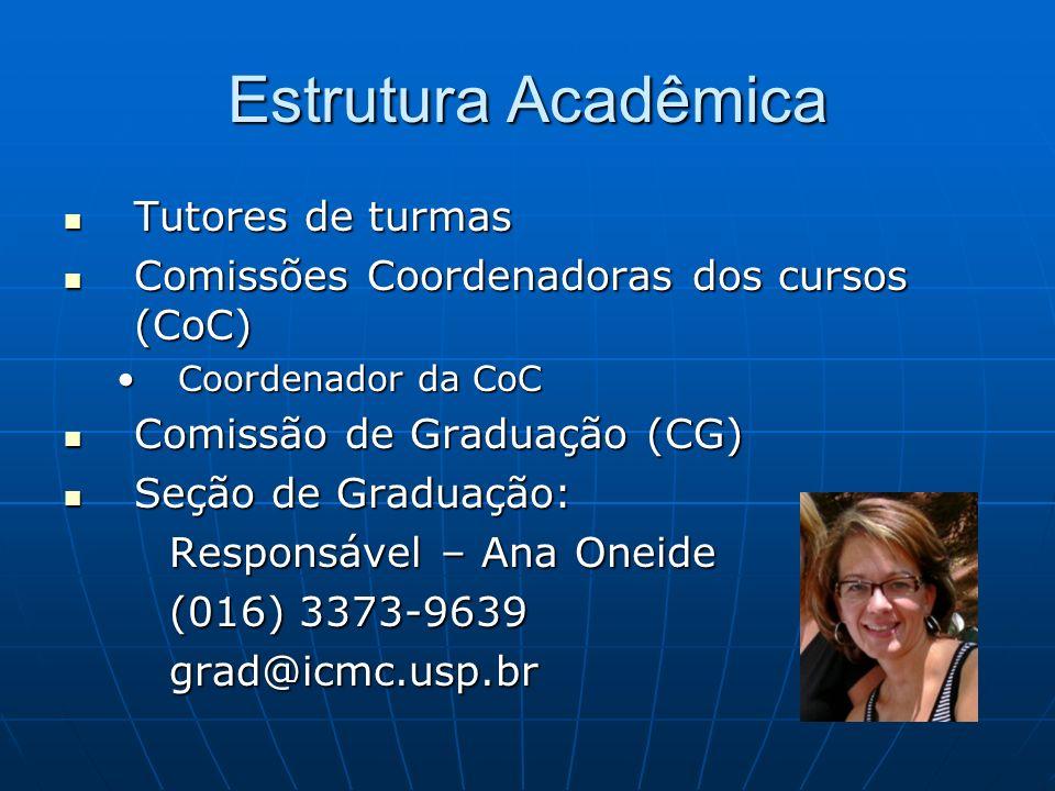 Estrutura Acadêmica Tutores de turmas Tutores de turmas Comissões Coordenadoras dos cursos (CoC) Comissões Coordenadoras dos cursos (CoC) Coordenador