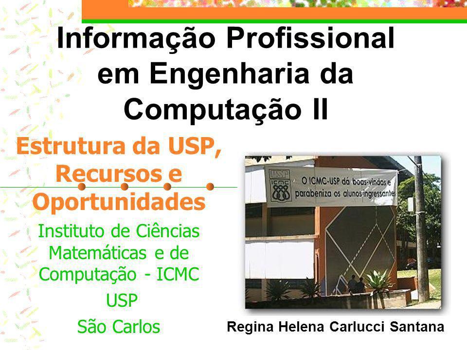 Organograma geral COMISSÃO DE GRADUAÇÃO (CG) COMISSÃO DE INFORMÁTICA (CI) COMISSÃO DE BIBLIOTECA (CB) Conselho dos departamentos Instituto de Ciências Matemáticas e de Computação