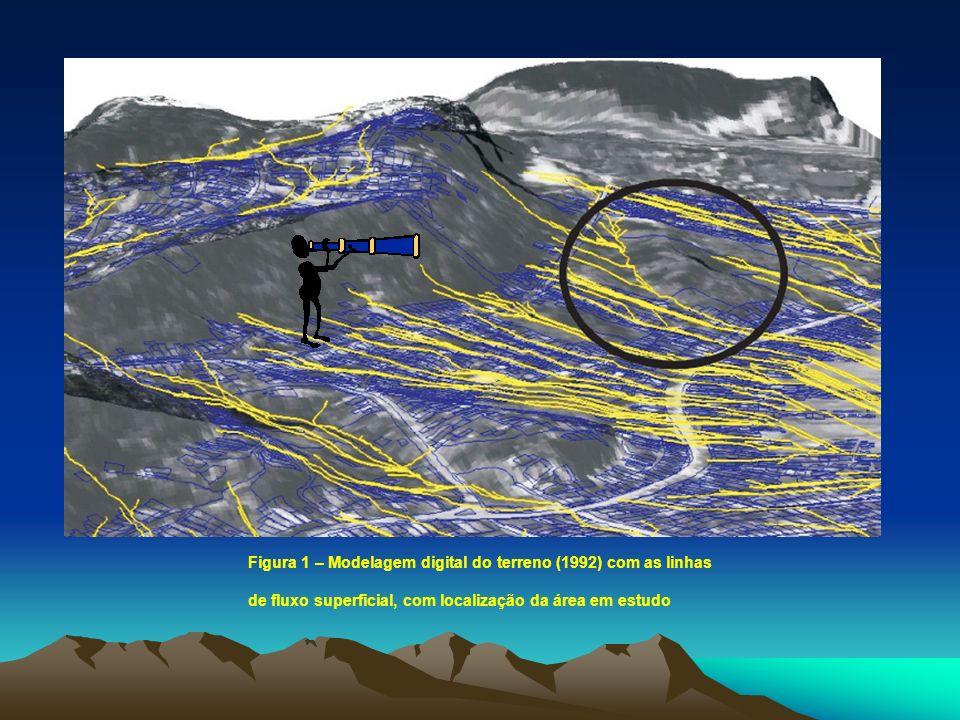 Figura 1 – Modelagem digital do terreno (1992) com as linhas de fluxo superficial, com localização da área em estudo