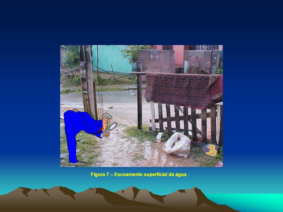 Figura 7 – Escoamento superficial da água.