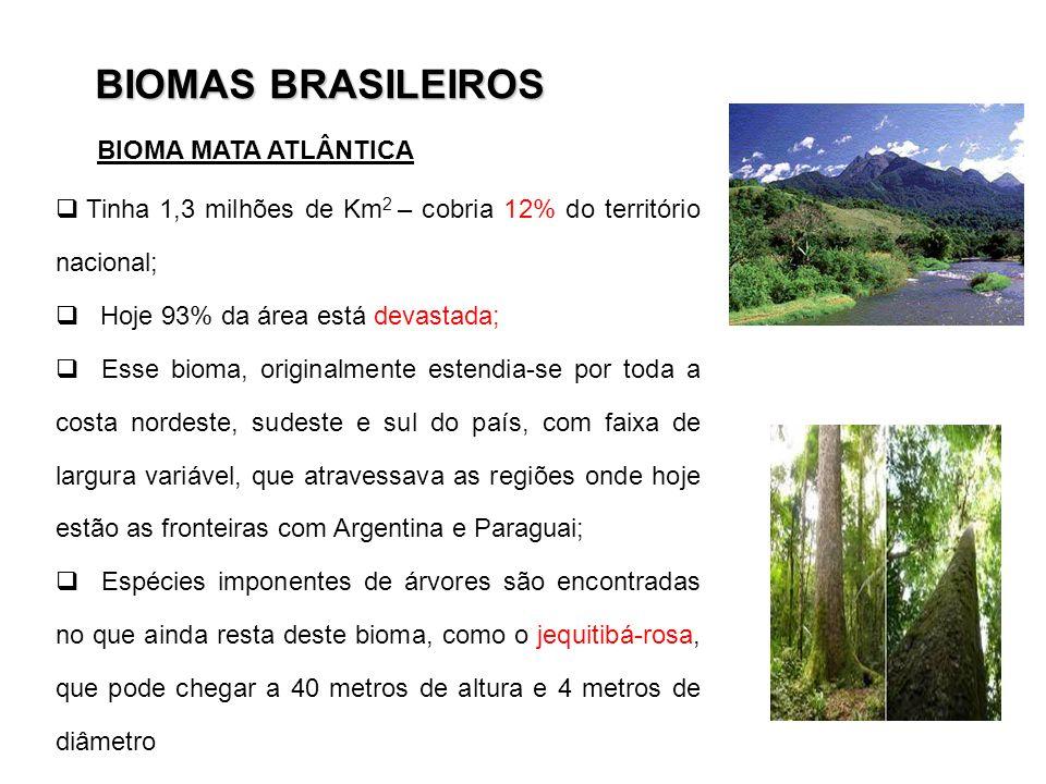 BIOMAS BRASILEIROS Tinha 1,3 milhões de Km 2 – cobria 12% do território nacional; Hoje 93% da área está devastada; Esse bioma, originalmente estendia-