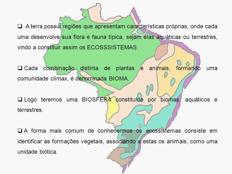 A terra possui regiões que apresentam características próprias, onde cada uma desenvolve sua flora e fauna típica, sejam elas aquáticas ou terrestres,
