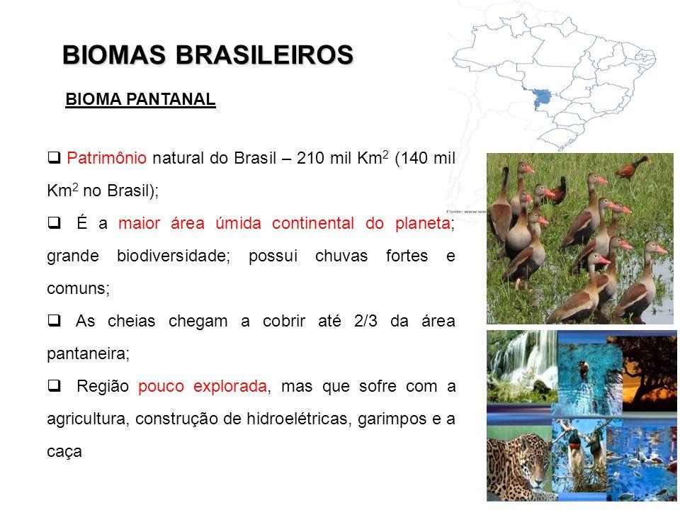 BIOMAS BRASILEIROS Patrimônio natural do Brasil – 210 mil Km 2 (140 mil Km 2 no Brasil); É a maior área úmida continental do planeta; grande biodivers