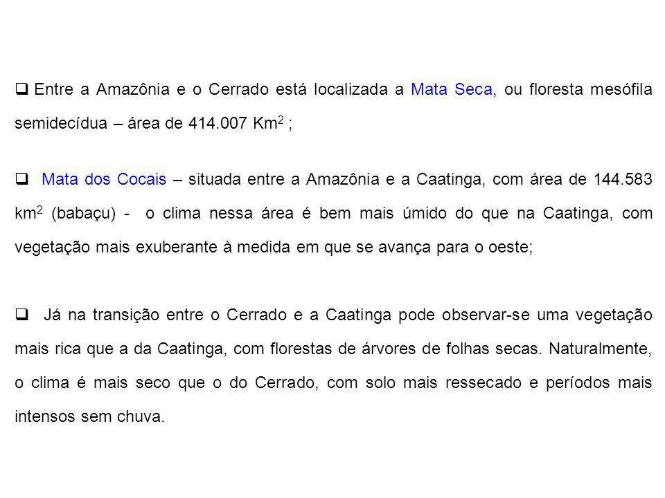 Entre a Amazônia e o Cerrado está localizada a Mata Seca, ou floresta mesófila semidecídua – área de 414.007 Km 2 ; Mata dos Cocais – situada entre a