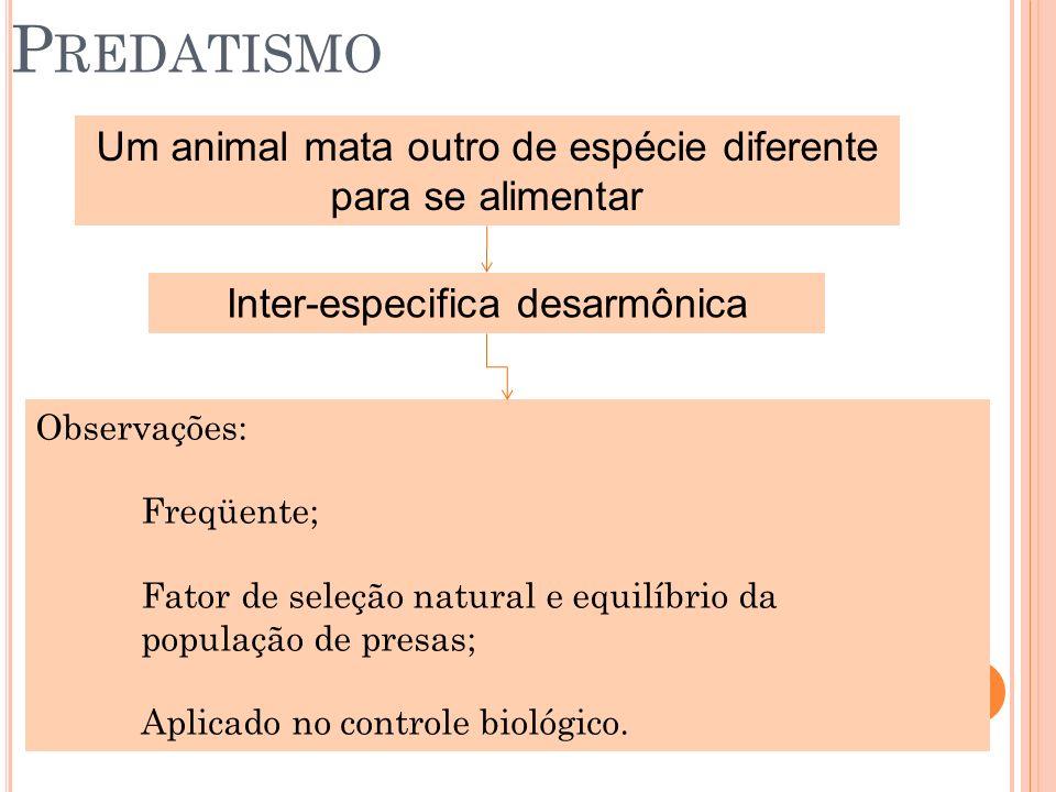 P REDATISMO Um animal mata outro de espécie diferente para se alimentar Inter-especifica desarmônica Observações: Freqüente; Fator de seleção natural