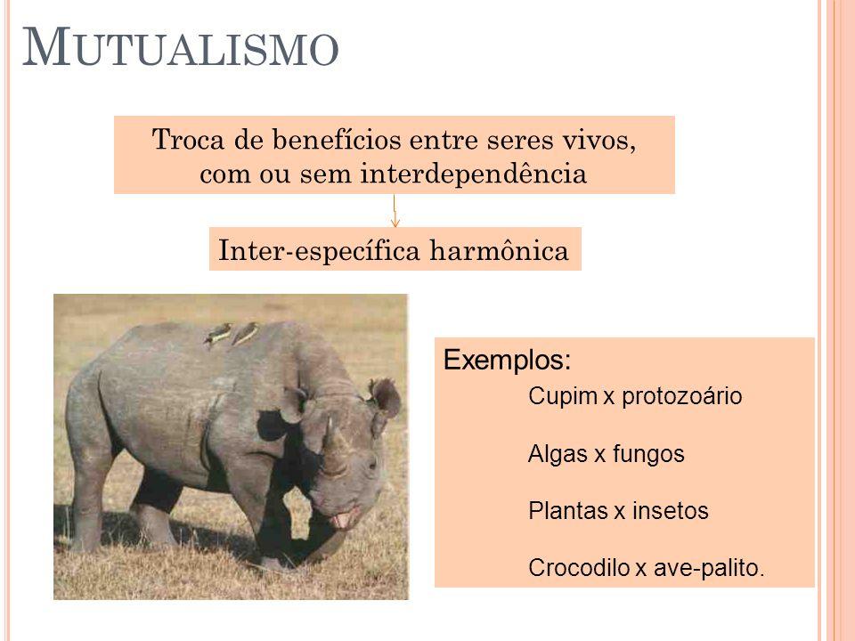 M UTUALISMO Troca de benefícios entre seres vivos, com ou sem interdependência Inter-específica harmônica Exemplos: Cupim x protozoário Algas x fungos