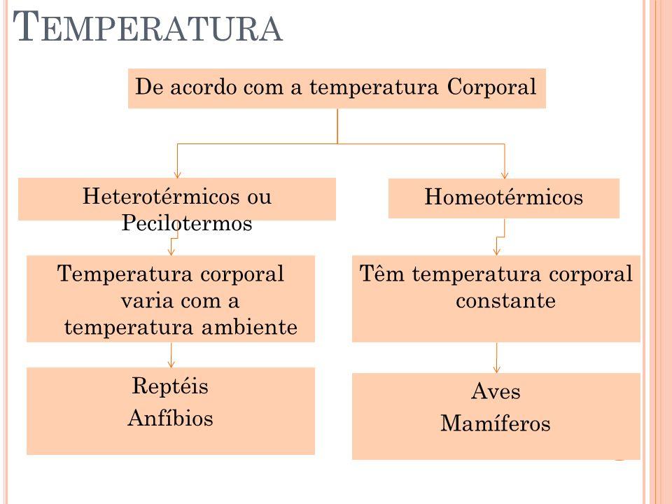T EMPERATURA De acordo com a temperatura Corporal Heterotérmicos ou Pecilotermos Homeotérmicos Temperatura corporal varia com a temperatura ambiente T