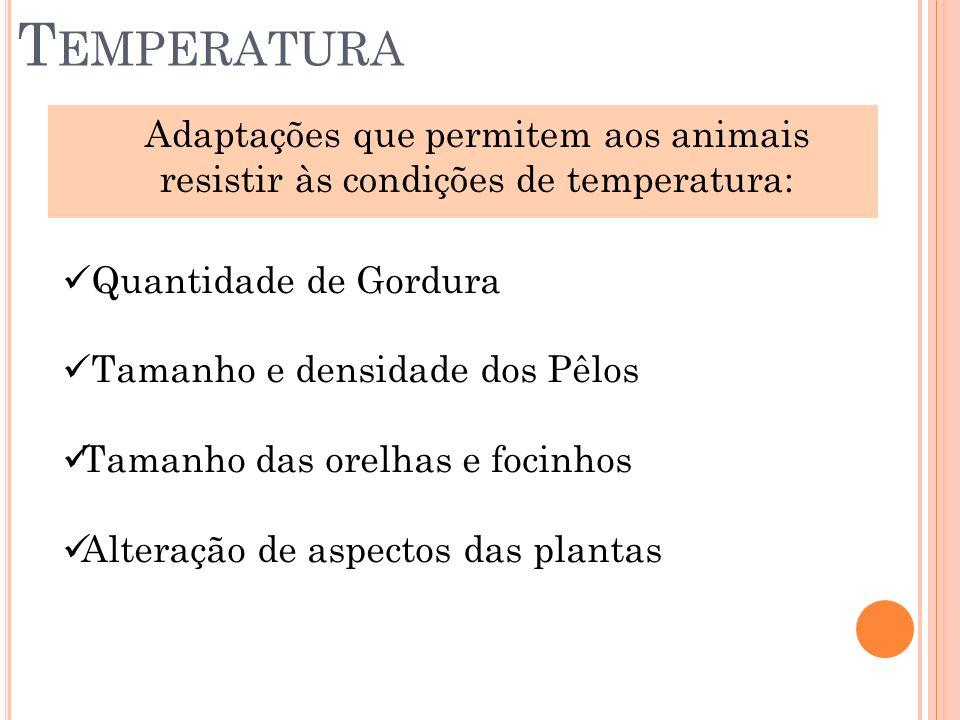 T EMPERATURA Adaptações que permitem aos animais resistir às condições de temperatura: Quantidade de Gordura Tamanho e densidade dos Pêlos Tamanho das