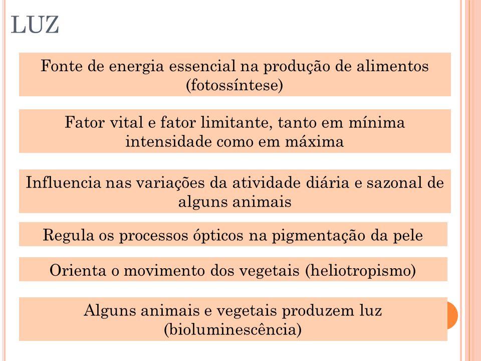 LUZ Fonte de energia essencial na produção de alimentos (fotossíntese) Fator vital e fator limitante, tanto em mínima intensidade como em máxima Influ