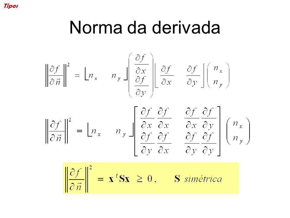 Norma da derivada Tipos