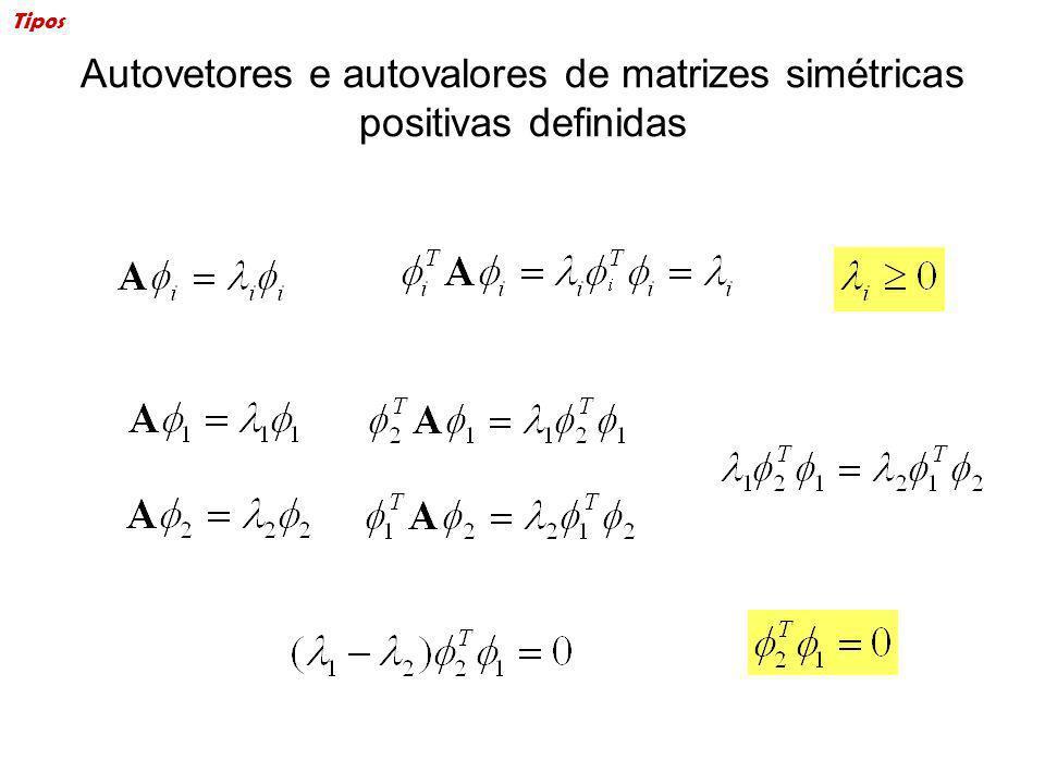Autovetores e autovalores de matrizes simétricas positivas definidas Tipos