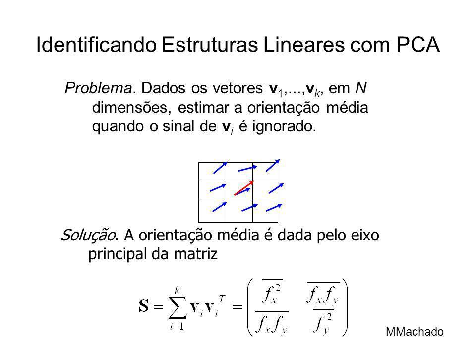 Identificando Estruturas Lineares com PCA Problema. Dados os vetores v 1,...,v k, em N dimensões, estimar a orientação média quando o sinal de v i é i