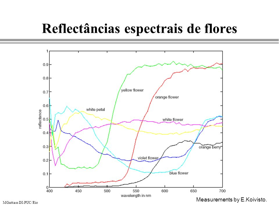 MGattass DI-PUC/Rio Reflectâncias espectrais de flores Measurements by E.Koivisto.