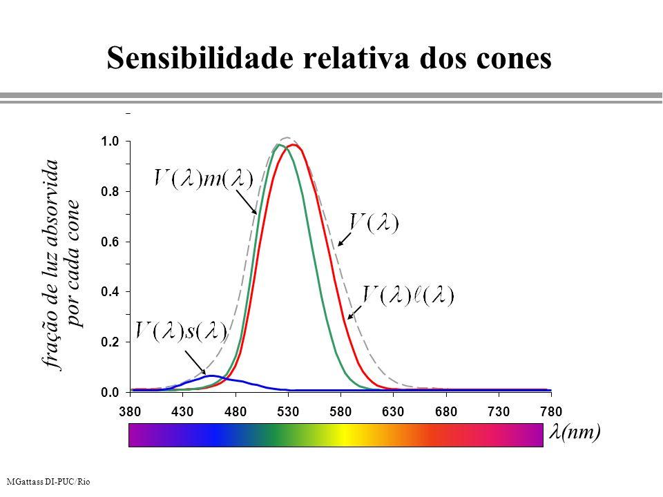 MGattass DI-PUC/Rio Sensibilidade relativa dos cones 0.0 0.2 0.4 0.6 0.8 1.0 380430480530580630680730780 (nm) fração de luz absorvida por cada cone