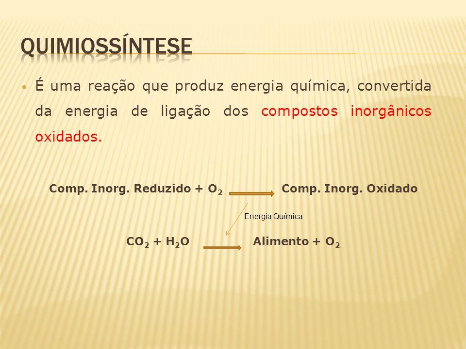 Comp. Inorg. Reduzido + O 2 Comp. Inorg. Oxidado CO 2 + H 2 O Alimento + O 2 Energia Química É uma reação que produz energia química, convertida da en