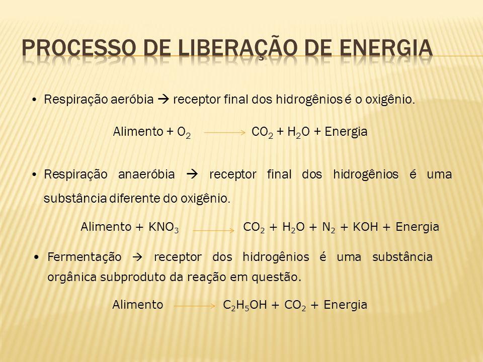 Respiração aeróbia receptor final dos hidrogênios é o oxigênio. Alimento + O 2 CO 2 + H 2 O + Energia Respiração anaeróbia receptor final dos hidrogên