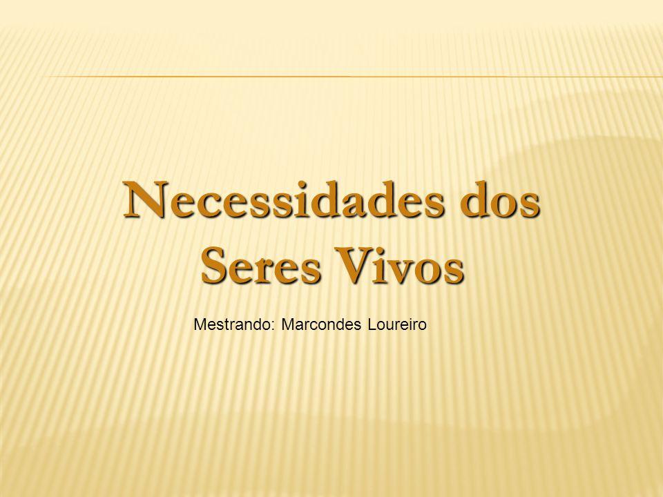 Necessidades dos Seres Vivos Mestrando: Marcondes Loureiro