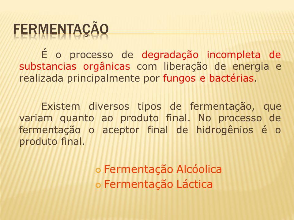 É o processo de degradação incompleta de substancias orgânicas com liberação de energia e realizada principalmente por fungos e bactérias. Existem div