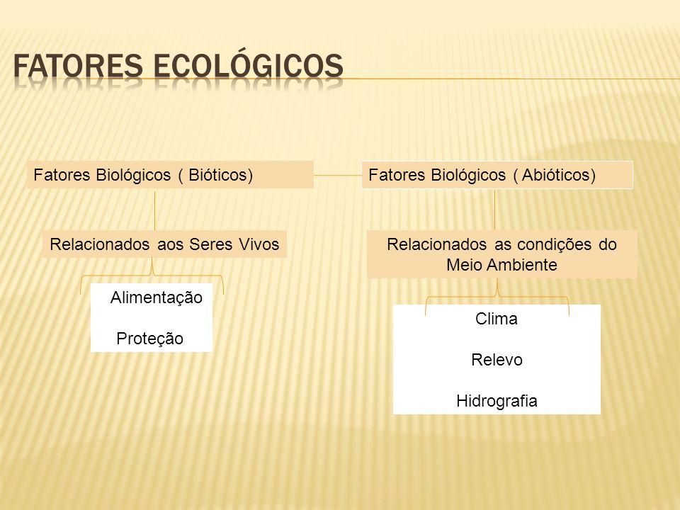 Fatores Biológicos ( Bióticos) Fatores Biológicos ( Abióticos) Relacionados aos Seres VivosRelacionados as condições do Meio Ambiente Alimentação Prot