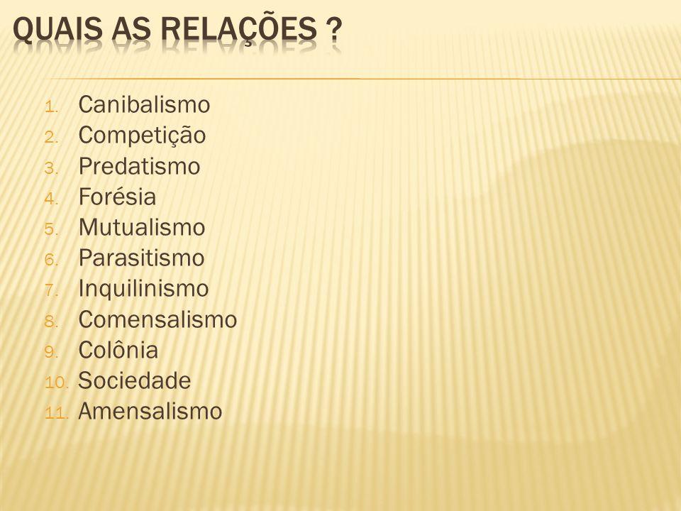 1. Canibalismo 2. Competição 3. Predatismo 4. Forésia 5. Mutualismo 6. Parasitismo 7. Inquilinismo 8. Comensalismo 9. Colônia 10. Sociedade 11. Amensa
