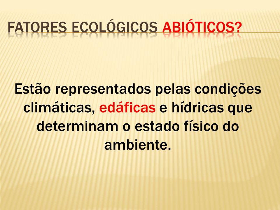 Estão representados pelas condições climáticas, edáficas e hídricas que determinam o estado físico do ambiente.