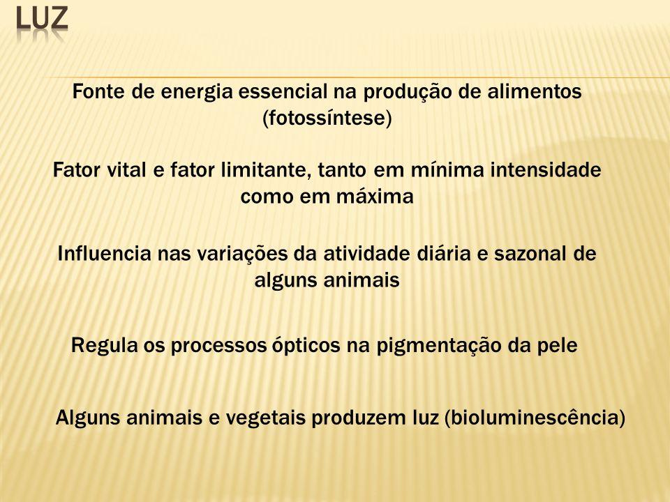 Fonte de energia essencial na produção de alimentos (fotossíntese) Fator vital e fator limitante, tanto em mínima intensidade como em máxima Influenci